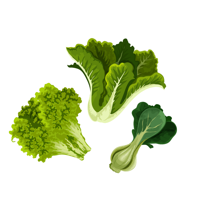 Kwas foliowy foliany źródła gdzie występują - bernatowicz dietetyk online nowa sól zaowocuj zdrowiem dieta zdrowe przepisy zdrowe odżywianie